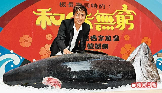bluefin tuna 1