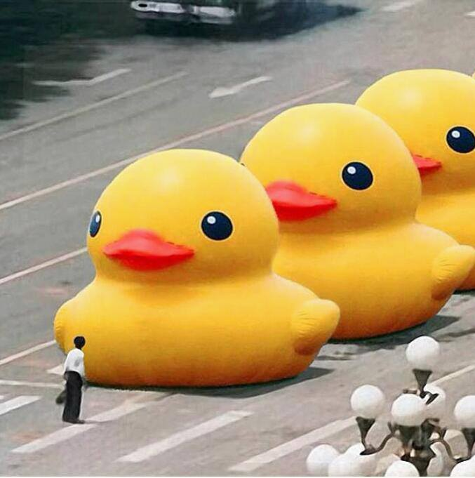 a man standing in front of the rubber ducks